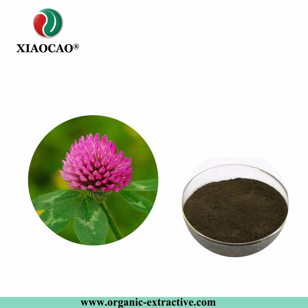 Factory Supply Free sample Pure Natural Red Clover Extract isoflavones 8%-40%