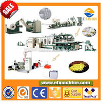 Factory Plastic Food Foam Dishes/Container Making Machine