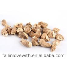 hot selling products button mushroom price in China