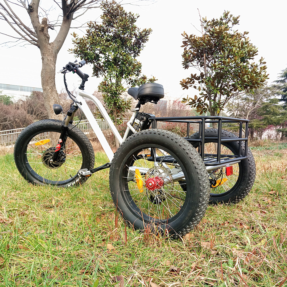 Fat tire electric cycle tricycle used with best service
