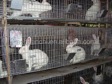 cheap rabbit cages/welded rabbit cage/indoor rabbit cages in china