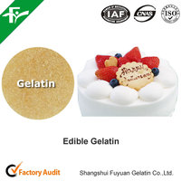 Fish Gelatin In Food And Beverage