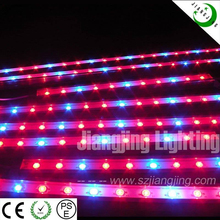 2015 Newest IP68 Waterproof 60w led Grow Light Tomato Growing Lights