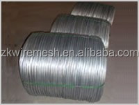 Hot Popular Electro Galvanized Iorn Wire form Factory