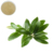 High quality pure olive leaf extract powder hydroxytyrosol olive hydroxytyrosol supplement