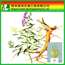Scutellaria Baicalensis Extract/ High Quality Baicalein/Baical Skullcap Root