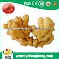 China ginger seeds/market prices for ginger