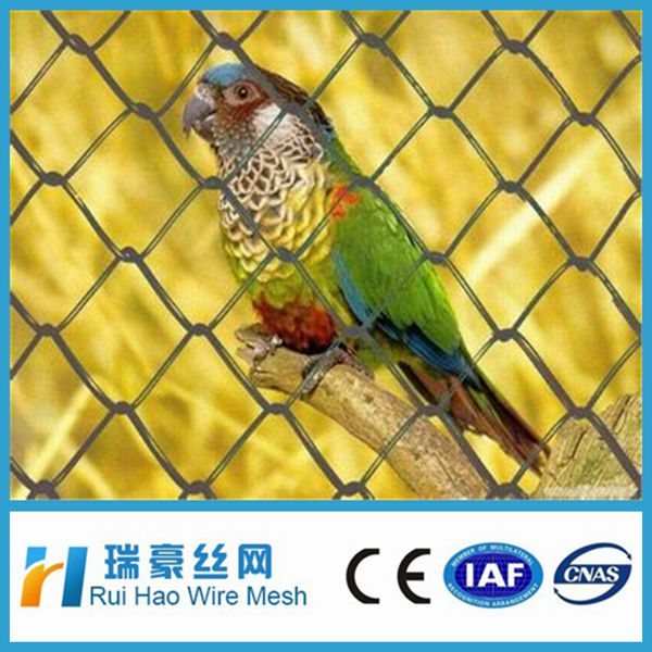 Electro galvanized chain link fence for tennis court /bird