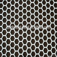 Perforated Metal Wire Mesh/Perforated Sheet/Perforated Plate