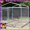 China factory iron fence dog kennel