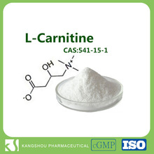Slimming product raw material bulk l-carnitine base powder