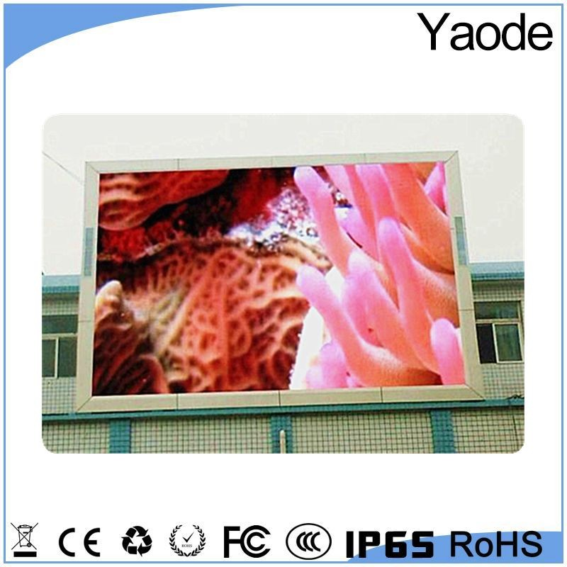Hd free animal sexy movies big video xxx p10 advertising led display screen