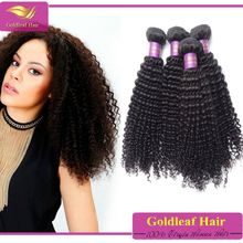 African beauty products New arrival factory price indian virgin kinky curly hair