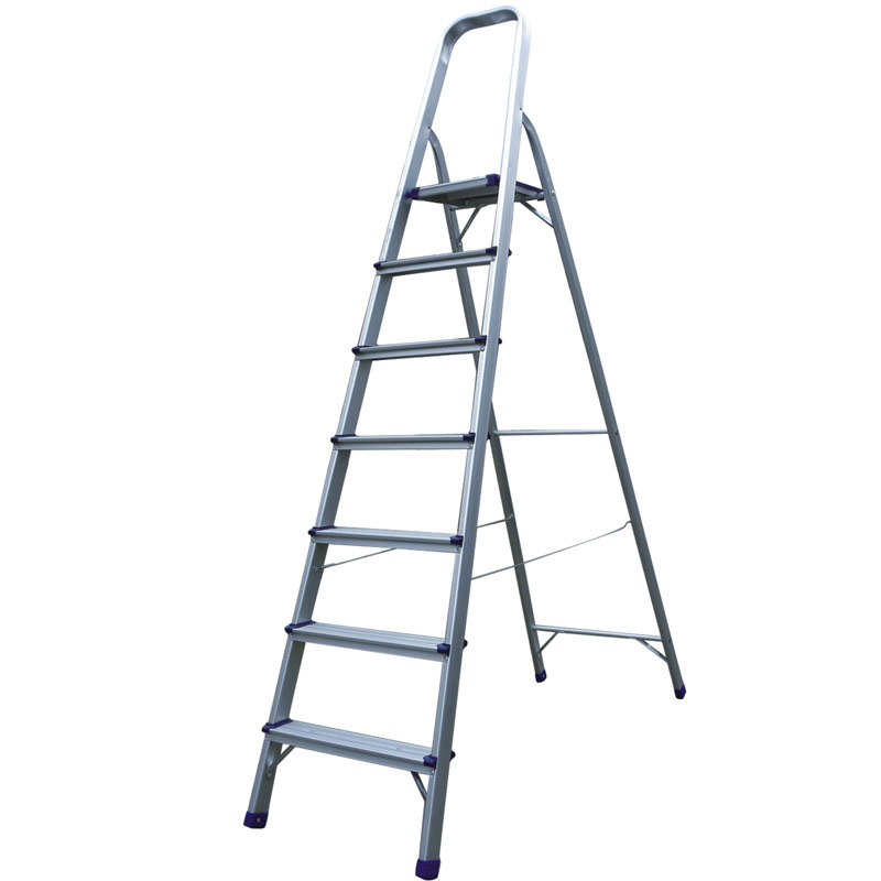 China cheap 2 section extension ladder with OEM