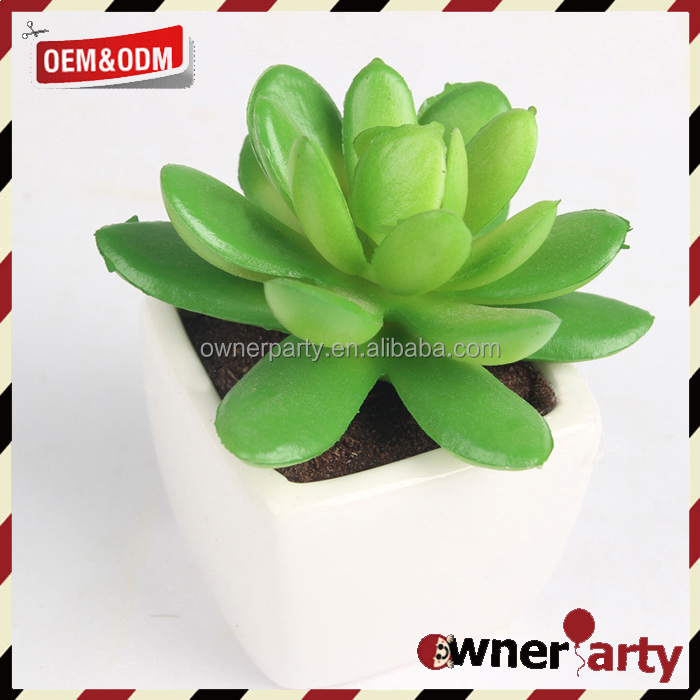 Mini Potted Succulents Plants Realistic Artificial Fake Plants
