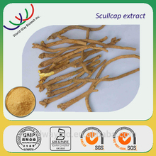Chinese herb medicine Scutellaria extract / baical skullcap root extract / scutellaria root extract with 85% baicaline