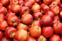 GRADE A SOUTH AFRICAN APPLES