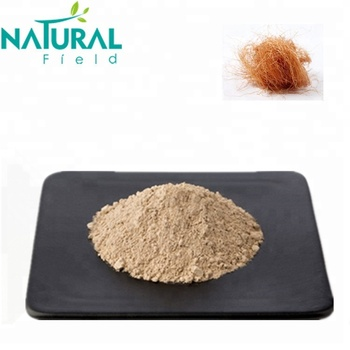 Factory supply Natural Corn silk extract