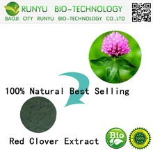 100% Natural Best Selling Red Clover Extract
