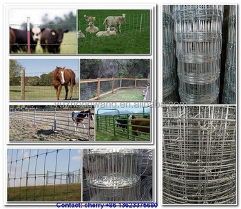 Cattle fence designs, hinge joint field fence ( factory )