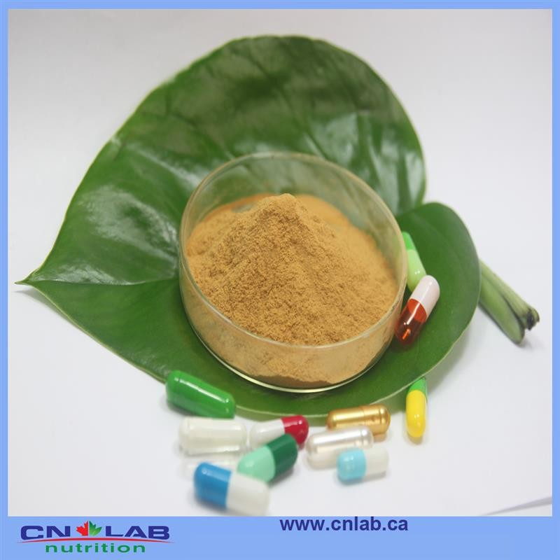 100% Natural Rose Hip Fruit Powder Vitamin C, Polyphenol Rosehip Extract Powder/Rose Hip Extract