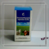 GMP certified dexamethasone sodium phosphate injection veterinary medicine for sheep