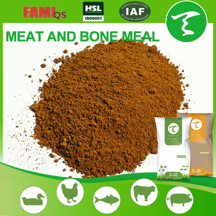 feed grade meat bone meal mbm export