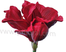 China artificial flowers artificial PU amaryllis artificial flowers importers large artificial flowers bulk artificial flowers