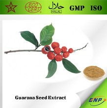 BNP Sells high quality guarana seed extract Powder Caffeine