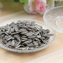 Wholesale Chinese sunflower seed kernel