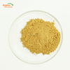 Chinese Traditional herb medicine natural dried black cohosh extract powder