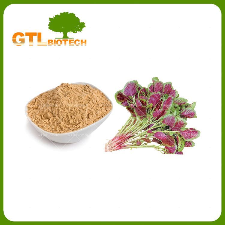 Manufacturer Supply Nature Amaranth Powder Extract Powder