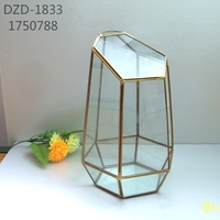 A11geometric plant glass vase small house home decoration free shipping