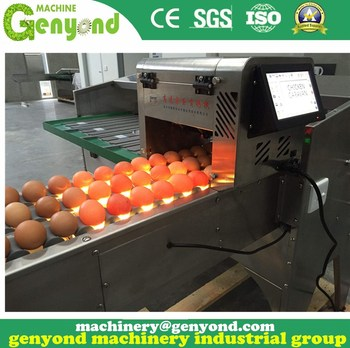 Brand new 10000pcs/h stainless egg electronica grading packing machine