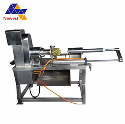 Fruit processing plant/pineapple peeling and pitting machine/machinery