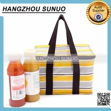 Travel Disposable Bulk Cooler Bag Insulated