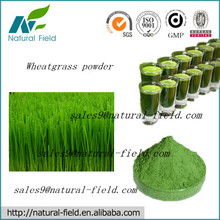 natural wheatgrass powder used in energy drink