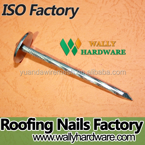2.5 inch bwg9 rubber washer lead roofing nails