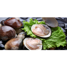 Wholesale Vaccumed Sea Products Frozen Short Neck Clam With Shell