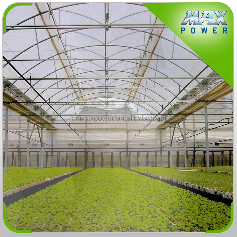 green house for tomato