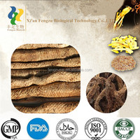 Superior high Quality 100% natural cistanche tubulosa extract powder
