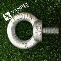 Galvanized Drop Forged Lifting Din580 Eye Bolt