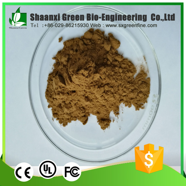 Dietary Supplement Wholesale Reishi Mushroom Extract Powder