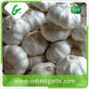 2015 New Crop of Natural Garlic Price for Sale Garlic Distributer