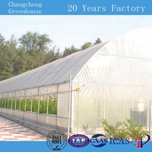 China Supply 6m span hydroponics nursery green house sheets