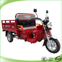 Portable three wheel large cargo motorcycles 125 cc