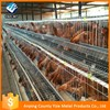 Hot selling multi-tier chicken cage