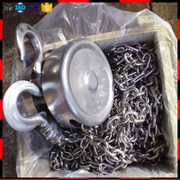 304 stainless steel chain block