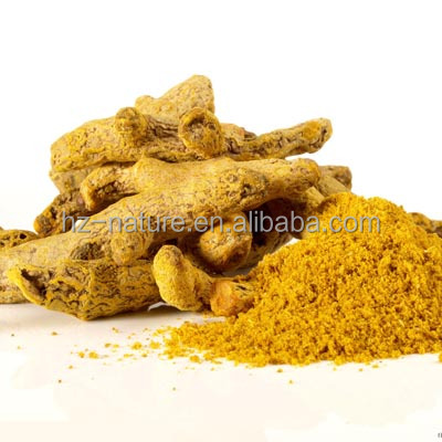 Organic Natural Turmeric Root Extract 95% Curcumin