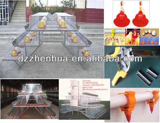 high quality automatic poultry farming chicken cage system/chicken cage with high quality/cages for sell